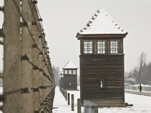 Free online lessons launched to teach young about the Holocaust