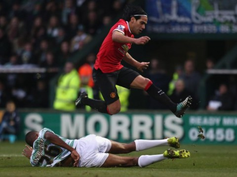 Radamel Falcao must prove himself at Manchester United, insists manager Louis van Gaal