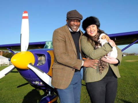 Dog gets flown 250 miles to meet new owners