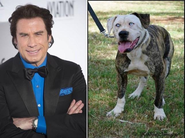 John Travolta, Boof