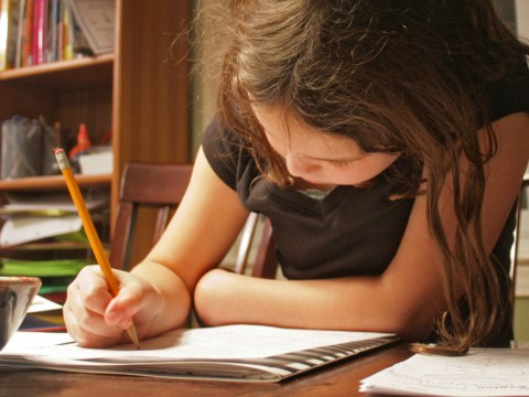 Homework is pointless, according to an educational expert