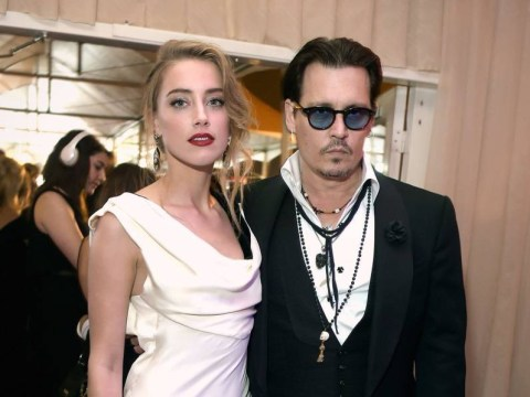 Johnny Depp could face 10 years in prison for illegally bringing dogs Pistol and Boo to Australia