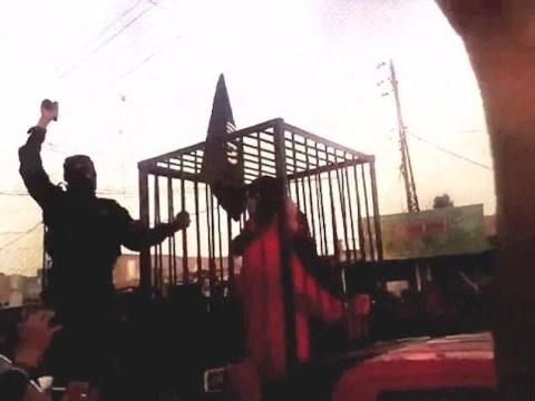 ISIS 'parade 17 Kurdish peshmerga captives in cages around town'