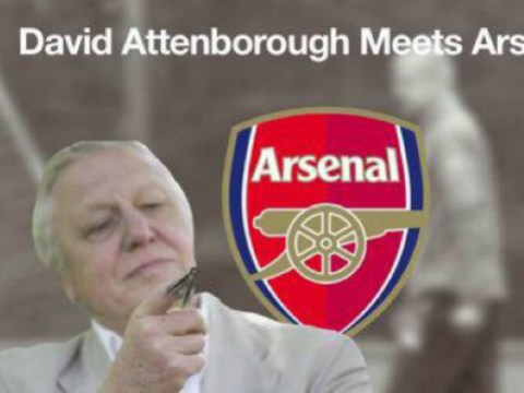 Arsenal given the David Attenborough treatment as wildlife expert provides 'analysis' on Gunners stars
