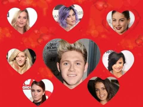 Niall, Harry, Liam, Louis or Zayn? Which One Direction star would make the best Valentine?