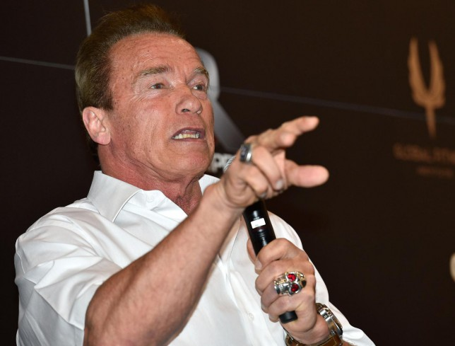 'Will the machines win?' Arnold Schwarzenegger and Stephen Hawking joined in Mark Zuckerberg's Facebook Q&A