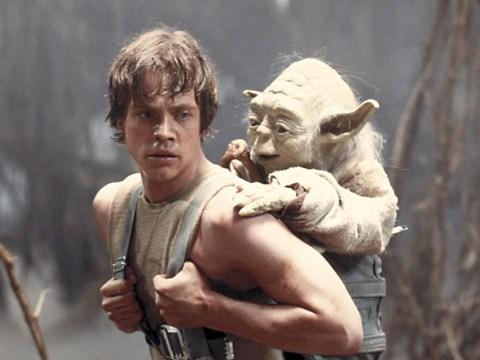 Star Wars' Yoda is Hawaiian, according to linguistics professor