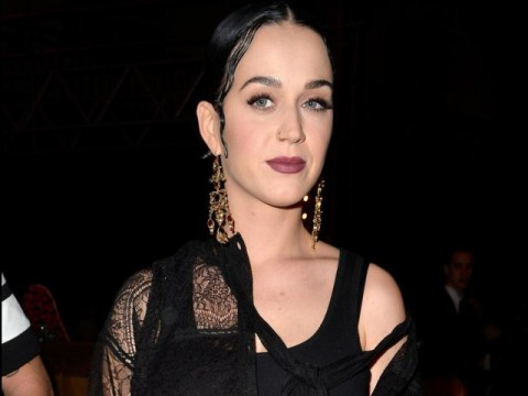 Is Katy Perry now dating Mumford and Sons star Winston Marshall?