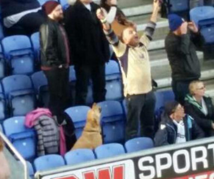 Five-thousand Leeds United fans and one DOG celebrate victory over Wigan at DW Stadium