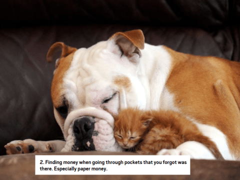 Here's 38 things that can make you smile in an instant