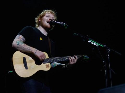 Taylor Swift's pal Ed Sheeran gives Calvin Harris his seal of approval