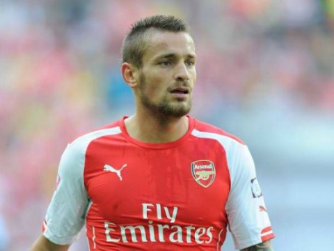 Arsenal's Mathieu Debuchy 'is a summer transfer target for Paris Saint-Germain'
