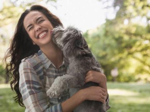 13 reasons having a dog is way better than having a partner