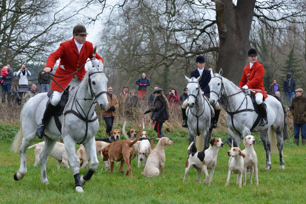 MPs will be given free vote on relaxing fox hunting ban next week