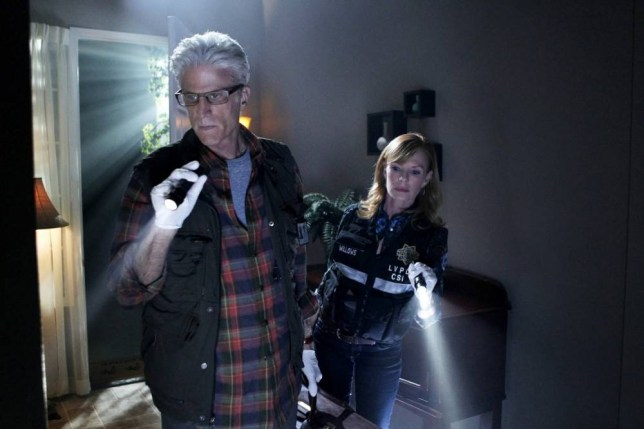 Television Programme: CSI with Ted Danson as D.B. Russell.   100804_D0759bm-e1316545192941.jpg