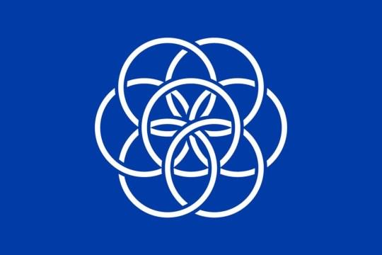 nasa flag