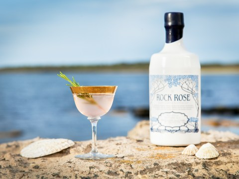 How is gin made? Everything you need to know about the spirit