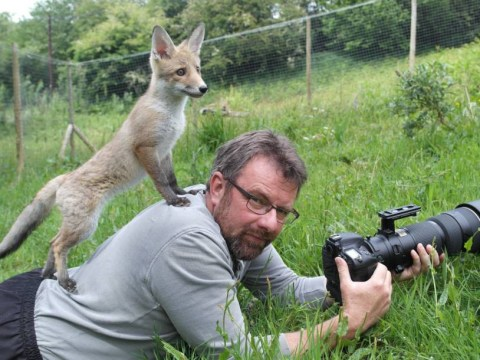 Wildlife photographer and his furry pal think we should #KeepTheBan on fox-hunting