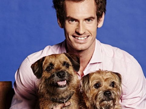 Andy Murray likes to 'Skype his dogs' when he's abroad playing tennis
