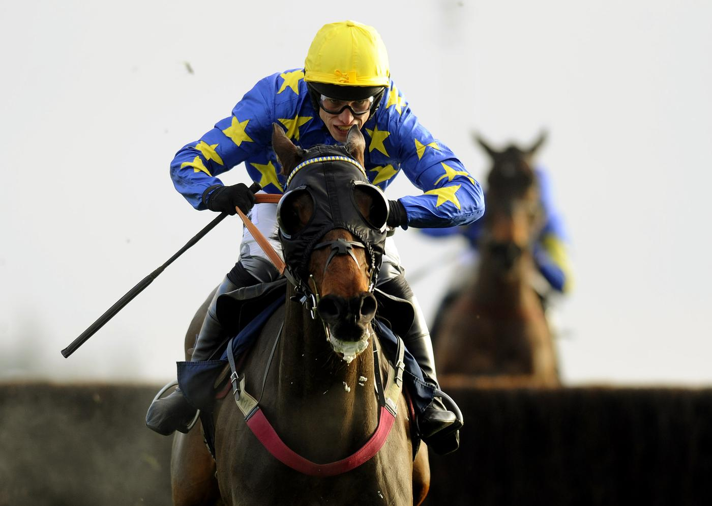 Kauto Star: Legendary racehorse put down after serious fall