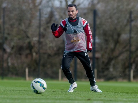 Swansea City must be honest with Leon Britton about their transfer plans