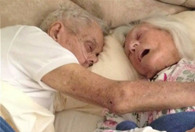The real-life Notebook couple: Husband and wife who were married for 75 years die hours apart, holding hands in bed, after she whispered 'wait for me, I'll be there soon'  Jeanette and Alexander Toczko starting 'dating' when they were eight They married in 1940, had five children and lived in San Diego, California Mr Toczko kept a photo of his wife at her Holy Communion in his wallet War veteran's health declined a few weeks ago after he broke hip in fall Mrs Toczko also became ill; the inseparable couple were left bed-bound  They told their children their final wish was to pass in each other's arms And earlier this month, they died in bed, holding hands, just hours apart   Read more: http://www.dailymail.co.uk/news/article-3144803/Wait-ll-soon-Couple-married-75-years-die-hours-holding-hands-bed.html#ixzz3em1Fdr70  Follow us: @MailOnline on Twitter | DailyMail on Facebook