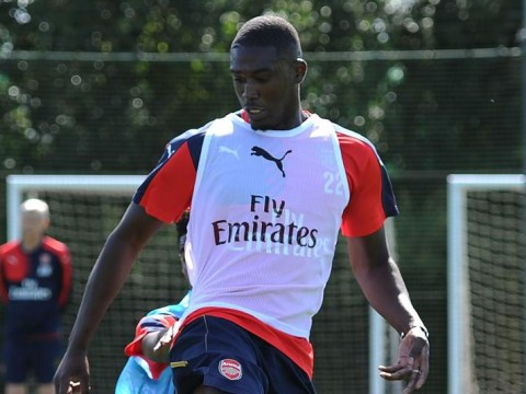 Arsenal striker Yaya Sanogo 'to join Dennis Bergkamp's Ajax on-loan'
