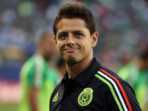 Tottenham 'ready to sign Javier Hernandez from Manchester United in £9m transfer'