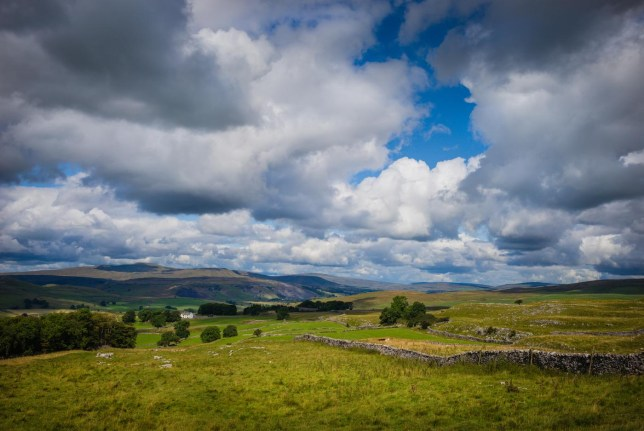 Summer in Ribblesdale