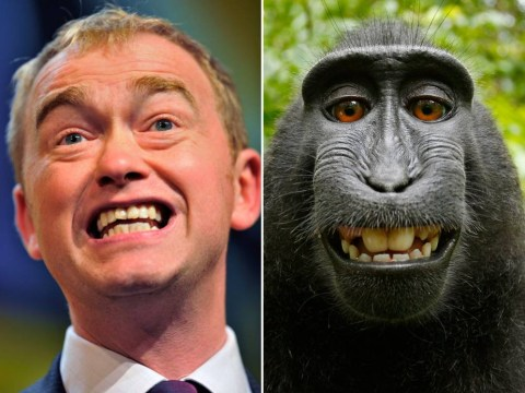 These politicians have surprising lookalikes