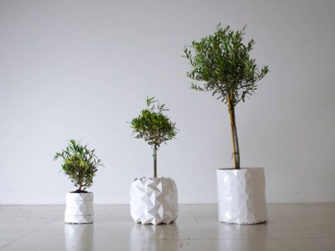 These ingenious origami containers continue to grow with its plant