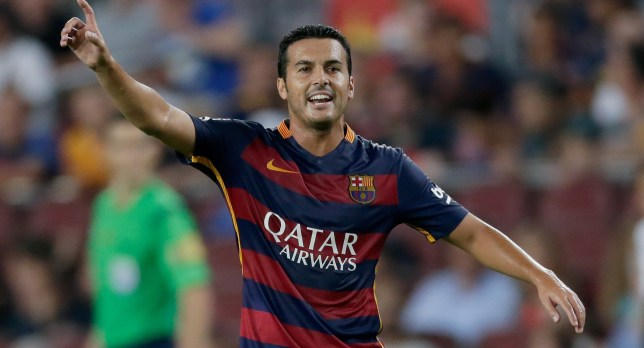 Pedro Rodriguez Ledesma of FC Barcelona during the Joan Gamper Trophy match between Barcelona and AS Roma on August 5, 2015 at the Camp Nou stadium in Barcelona, Spain.(Photo by VI Images via Getty Images)