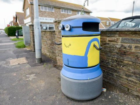People of Sussex 'bemused' by sudden spate of bins dressed as Minions in the area