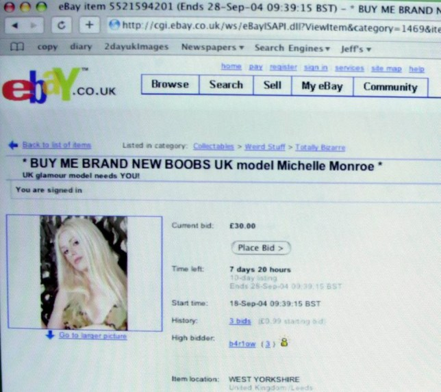 Weird eBay auction picture gallery from SWNS To mark the 20th anniversary of the auction site eBay here are some of the strange items people have attemped to flog. See SWNS story SWEBAY. Model Michelle Monroe who is advertising on ebay for someone to pay for a breast enlargement.