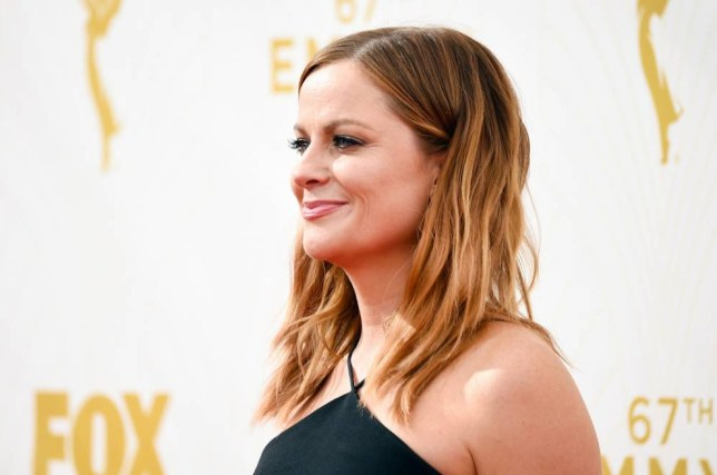 LOS ANGELES, CA - SEPTEMBER 20: Actress Amy Poehler attends the 67th Annual Primetime Emmy Awards at Microsoft Theater on September 20, 2015 in Los Angeles, California. (Photo by Frazer Harrison/Getty Images)
