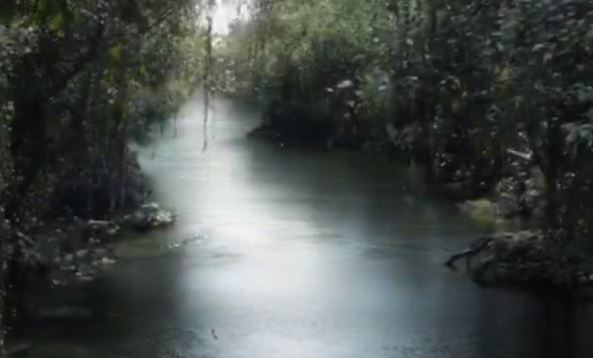 The Jungle Book teaser trailer is here and it's amazing