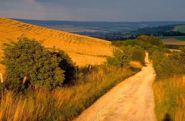the ridgeway, Streatley, Berkshire, England.