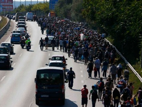 Hungary organise buses to take refugees to Austrian border