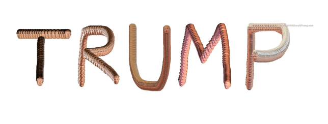 paint with donald trump website