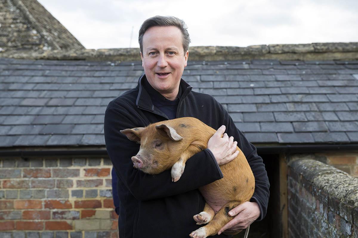 David Cameron and Florence