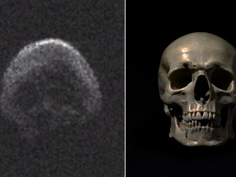 An asteroid skimmed Earth and looked just like a skull
