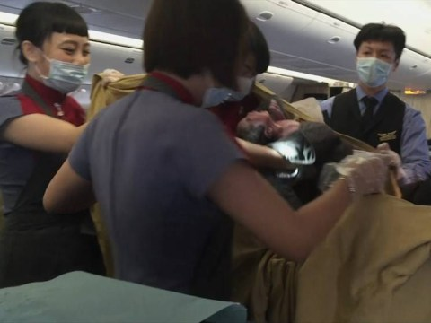 Newlywed doctor returning from honeymoon delivers a baby on flight home
