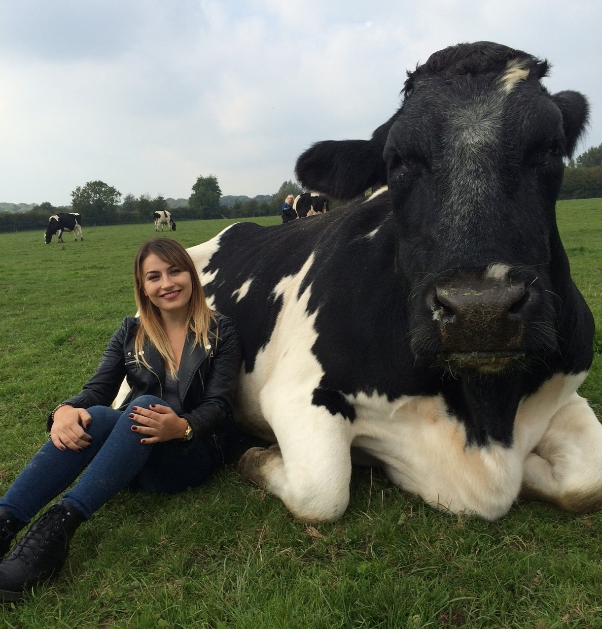 13 awesome farm animals who were rescued from the slaughterhouse