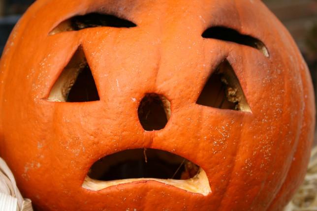 Stark pumpkin warning (Picture: Twitter)
