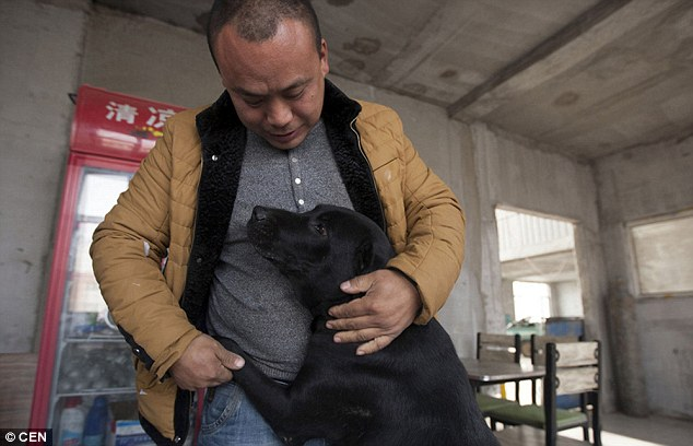 Millionaire goes broke building dog shelter to save thousands from the slaughterhouse
