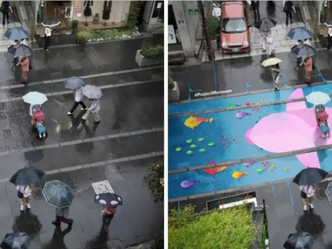 These murals only appear on the pavement when it's raining