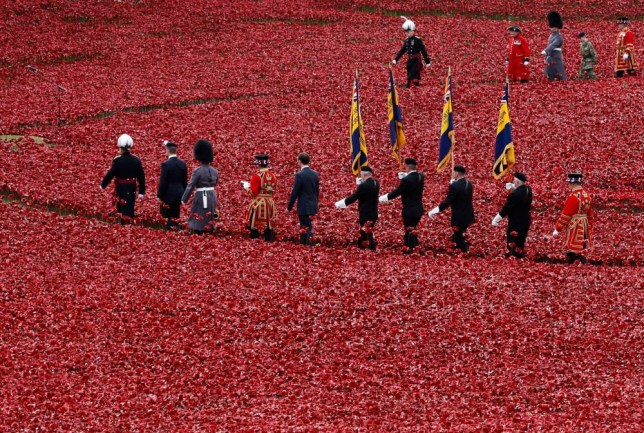 "Servicemen walk past the ceramic poppies that form part of the art installation ""Blood Swept Lands and Seas of Red"", during an Armistice Day ceremony at the Tower of London in London November 11, 2014. REUTERS/Kevin Coombs (BRITAIN - Tags: CONFLICT ANNIVERSARY MILITARY) - RTR4DOZE"