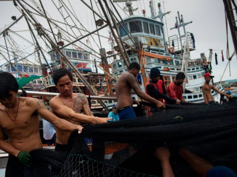 'Slavery and coercion' have been used against fishermen by Nestlé