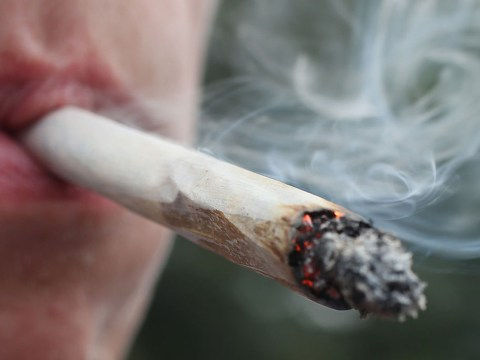 Drug driver so high on cannabis he was nearly 15 times the limit