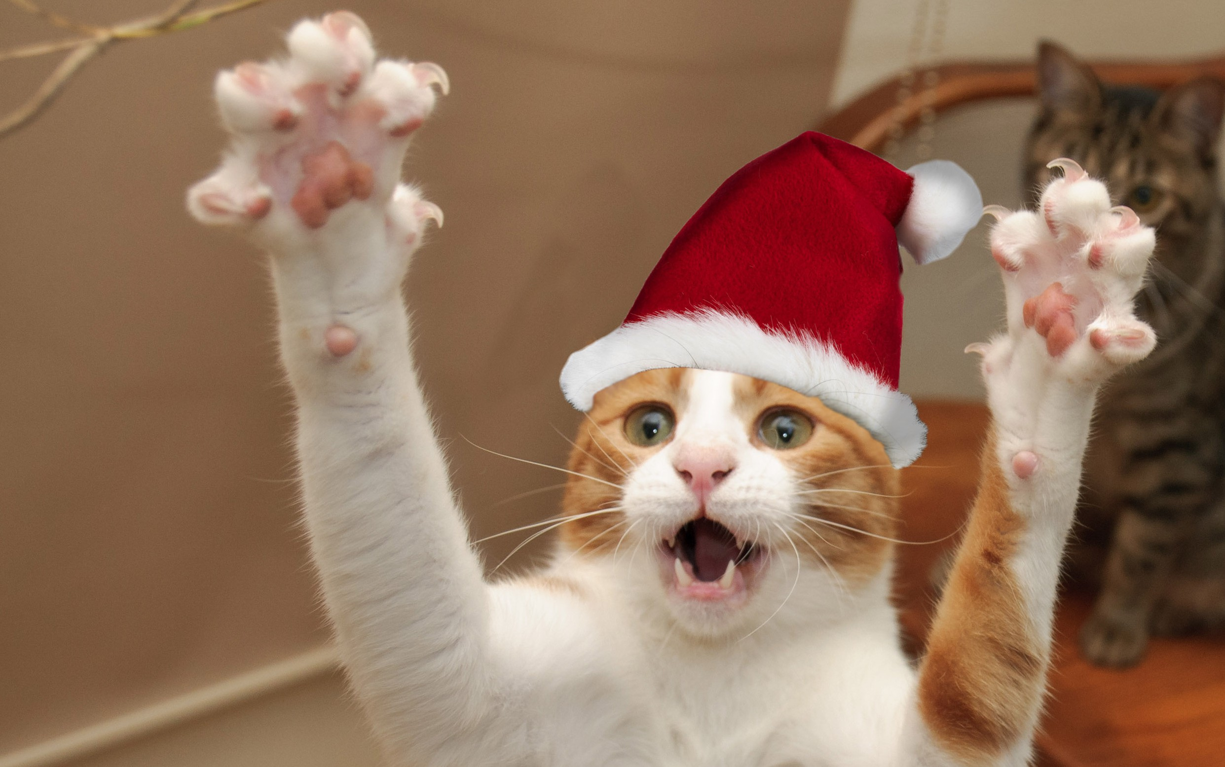 15 of the weirdest Christmas traditions from around the globe